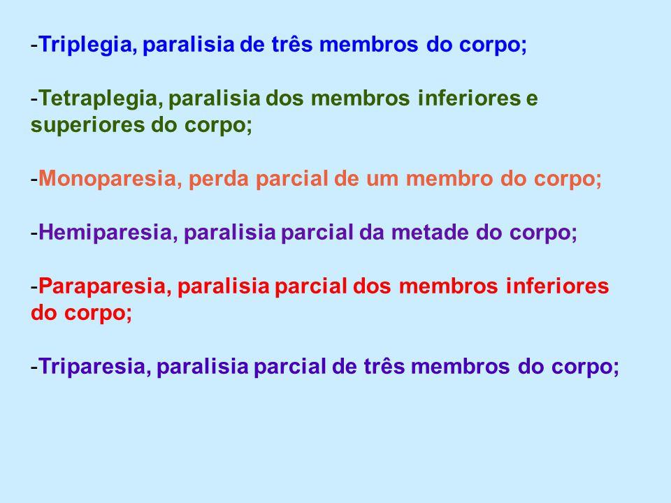 -Triplegia, paralisia de três membros do corpo; -Tetraplegia, paralisia dos membros inferiores e superiores do corpo; -Monoparesia, perda parcial de u