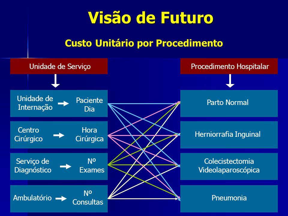 Custo Unitário por Procedimento Visão de Futuro Unidade de Serviço Unidade de Internação Centro Cirúrgico Serviço de Diagnóstico Ambulatório Paciente