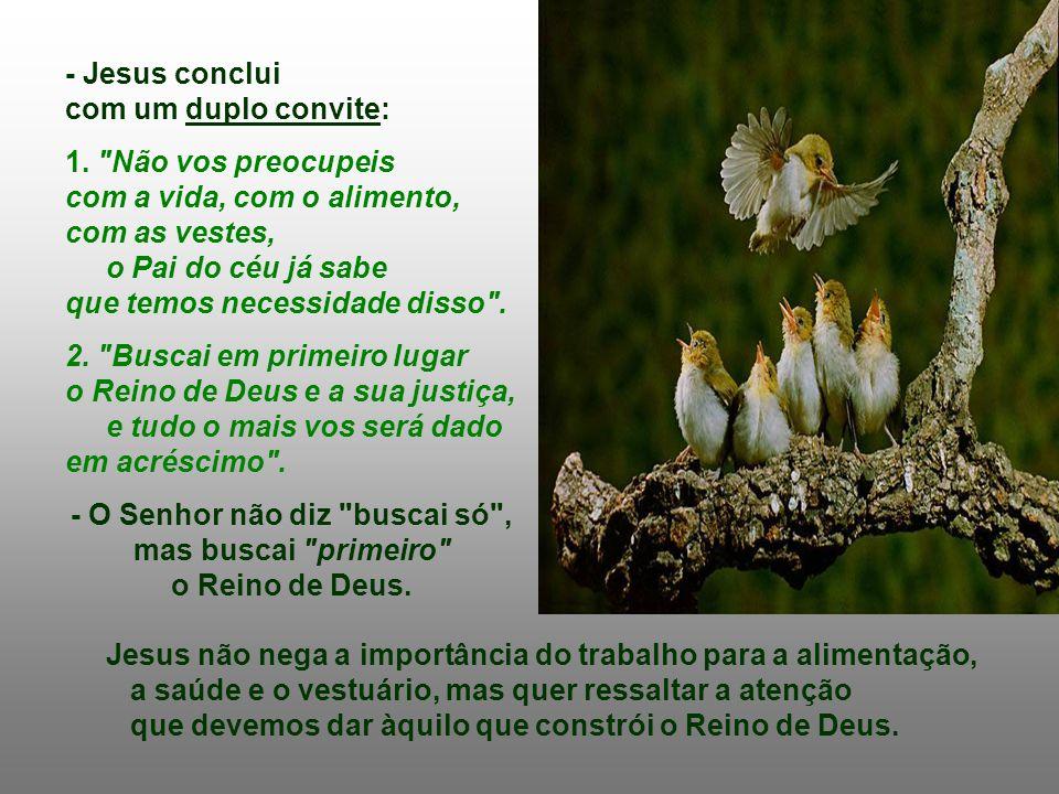 - Duas belíssimas imagens da natureza ilustram essa idéia: Se os Pássaros e os Lírios do campo são objeto do cuidado de Deus, que provê gratuitamente