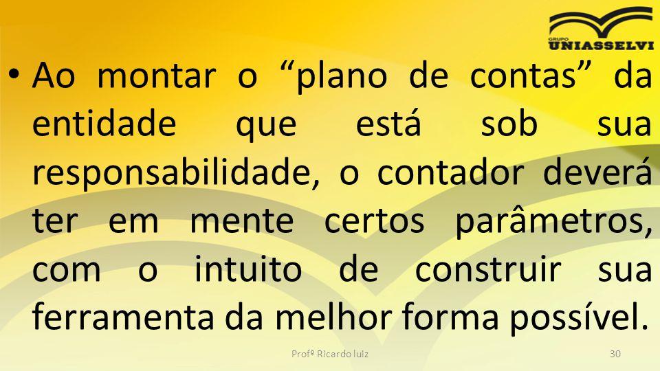 """Ao montar o """"plano de contas"""" da entidade que está sob sua responsabilidade, o contador deverá ter em mente certos parâmetros, com o intuito de constr"""