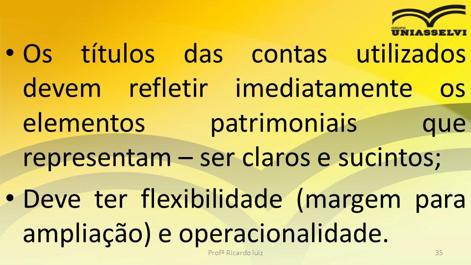 Os títulos das contas utilizados devem refletir imediatamente os elementos patrimoniais que representam – ser claros e sucintos; Deve ter flexibilidad
