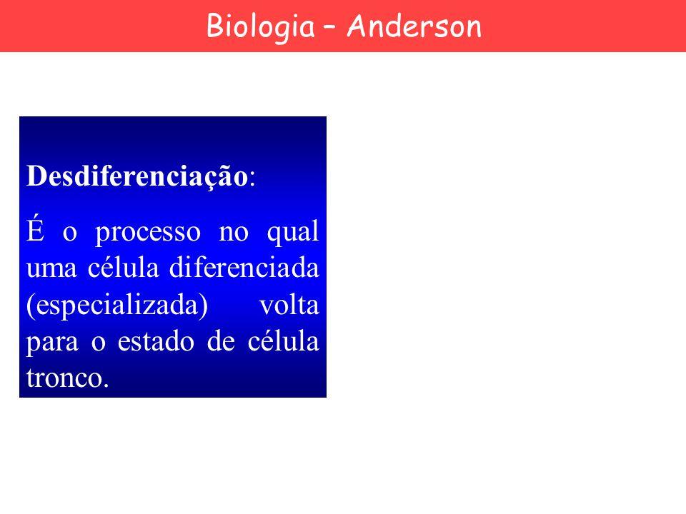 Desdiferenciação: É o processo no qual uma célula diferenciada (especializada) volta para o estado de célula tronco. Biologia – Anderson