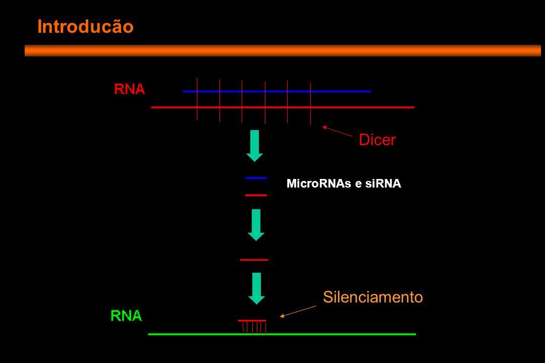 Introducão - Repressão gênica via microRNA: -Havia registros anteriores de miRNA diferencialmente expressos em células tronco -Sugeriu-se então que miRNAs poderiam ter um papel na regulação do caráter tronco