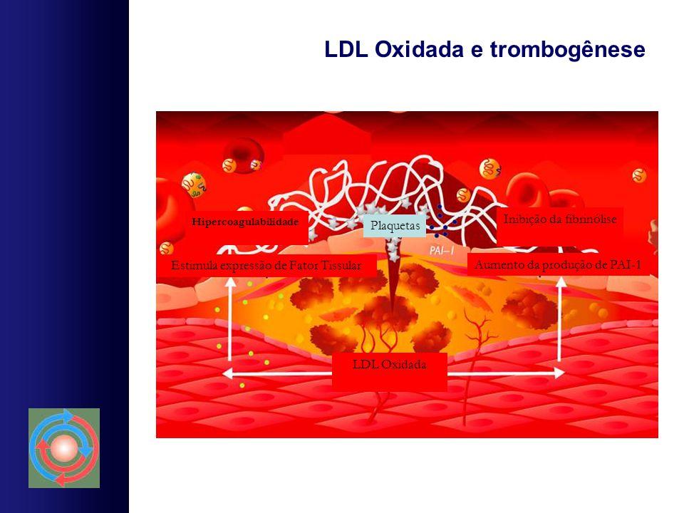 LDL Oxidada e trombogênese Hipercoagulabilidade Inibição da fibrinólise LDL Oxidada Estimula expressão de Fator Tissular Aumento da produção de PAI-1