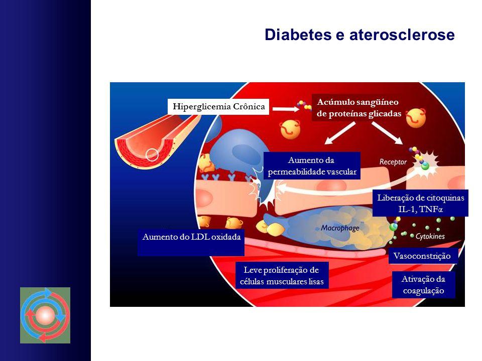 Diabetes e aterosclerose Aumento do LDL oxidada Vasoconstrição Leve proliferação de células musculares lisas Ativação da coagulação Aumento da permeab