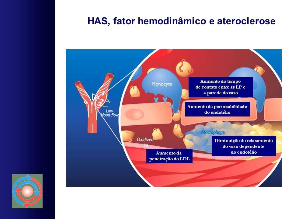 HAS, fator hemodinâmico e ateroclerose Aumento do tempo de contato entre as LP e a parede do vaso Aumento da penetração do LDL Aumento da permeabilida