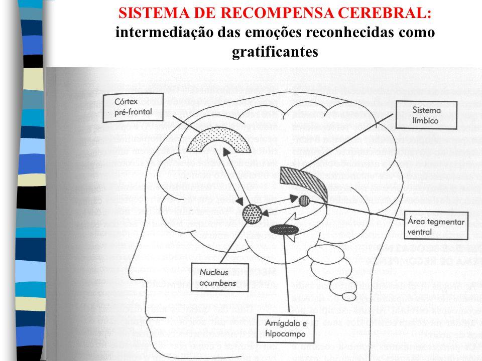 SISTEMA DE RECOMPENSA CEREBRAL: intermediação das emoções reconhecidas como gratificantes