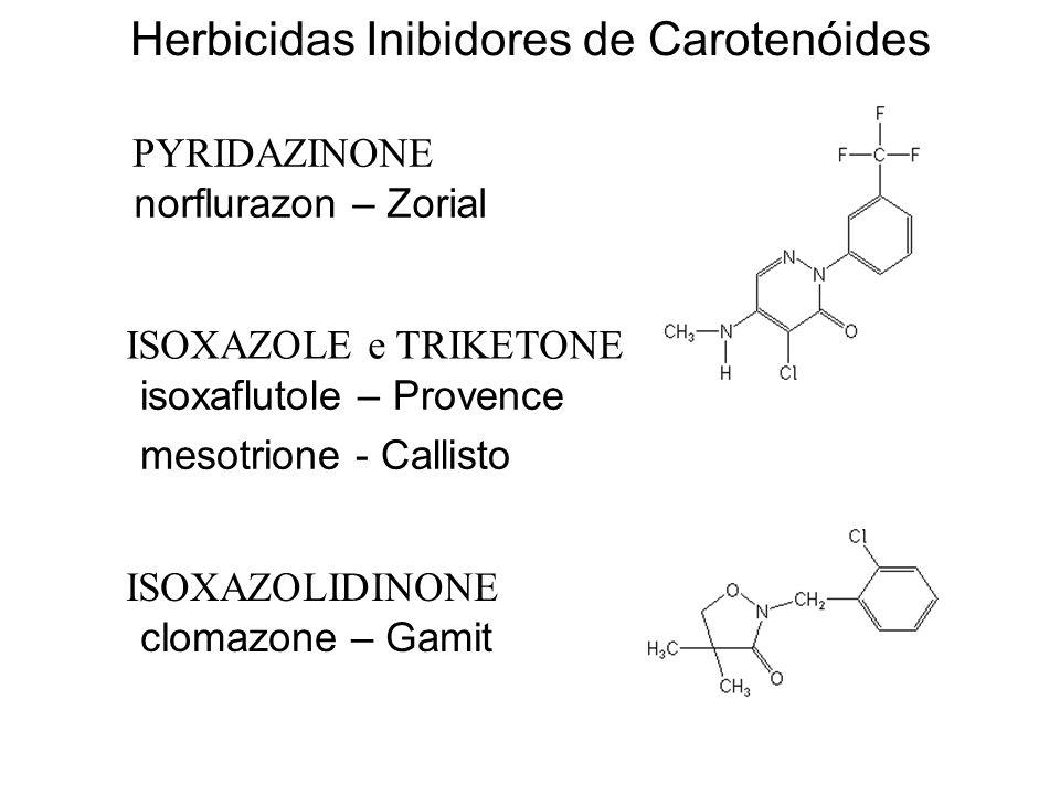 Modo de Ação: Inibidores de Carotenóides Esses herbicidas inibem a enzima fitoeno desidrogenase, provocando o acúmulo de fitoeno.