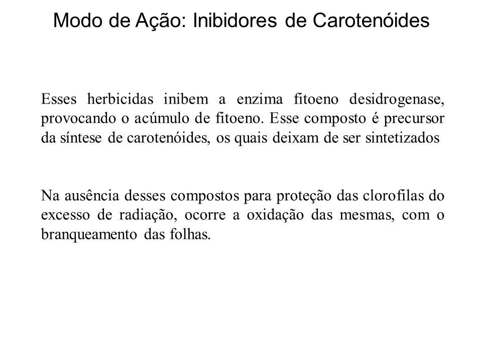 Modo de Ação: Inibidores de Carotenóides Esses herbicidas inibem a enzima fitoeno desidrogenase, provocando o acúmulo de fitoeno. Esse composto é prec