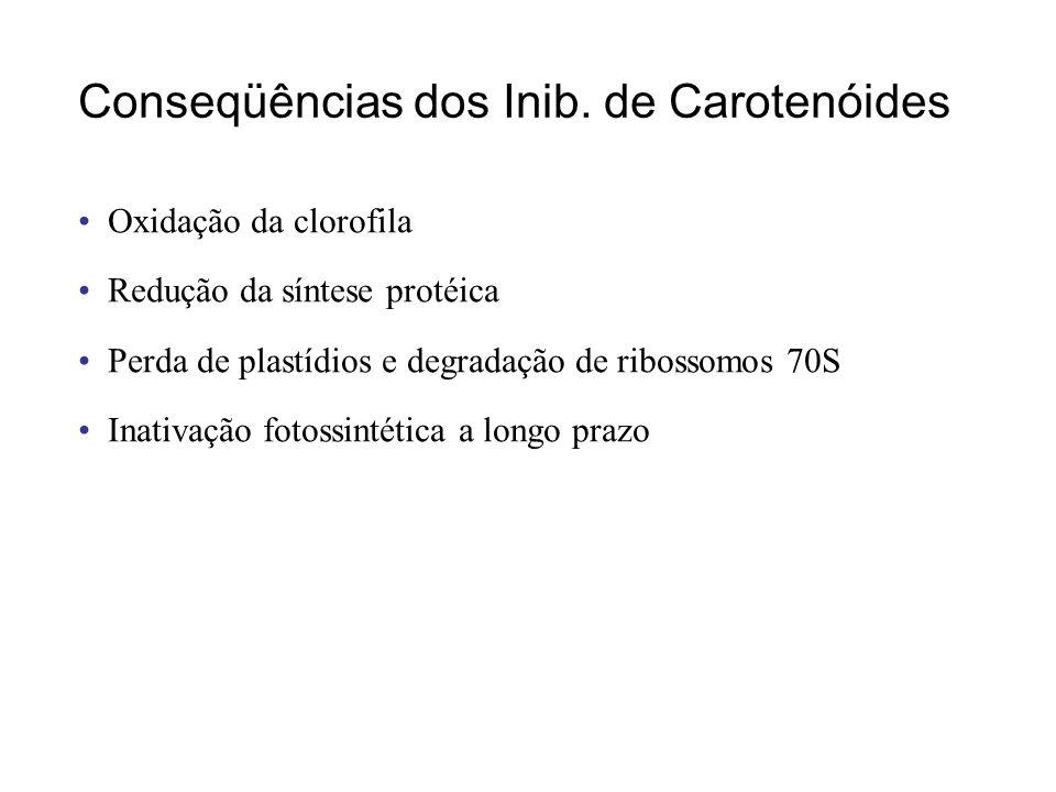 Toxidez de norflurazon (Inib. FS I)