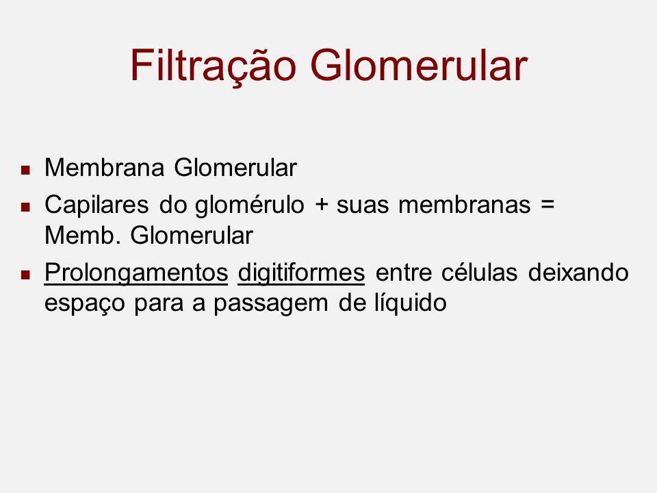 Filtração Glomerular Membrana Glomerular Capilares do glomérulo + suas membranas = Memb.