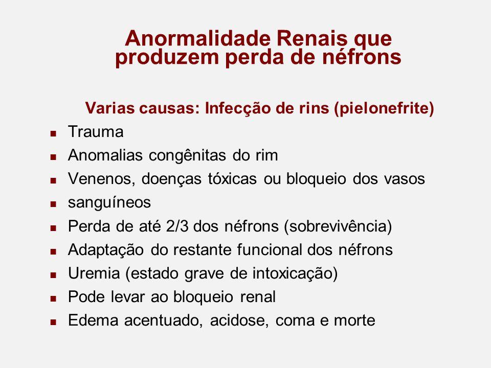 Anormalidade Renais que produzem perda de néfrons Varias causas: Infecção de rins (pielonefrite) Trauma Anomalias congênitas do rim Venenos, doenças tóxicas ou bloqueio dos vasos sanguíneos Perda de até 2/3 dos néfrons (sobrevivência) Adaptação do restante funcional dos néfrons Uremia (estado grave de intoxicação) Pode levar ao bloqueio renal Edema acentuado, acidose, coma e morte