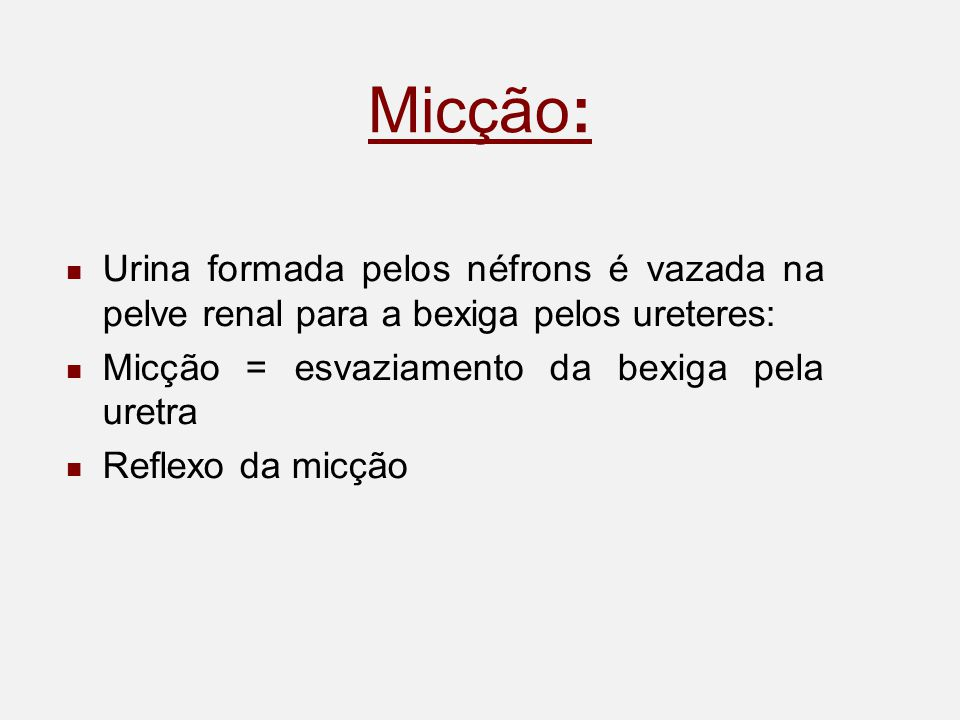 Micção: Urina formada pelos néfrons é vazada na pelve renal para a bexiga pelos ureteres: Micção = esvaziamento da bexiga pela uretra Reflexo da micção