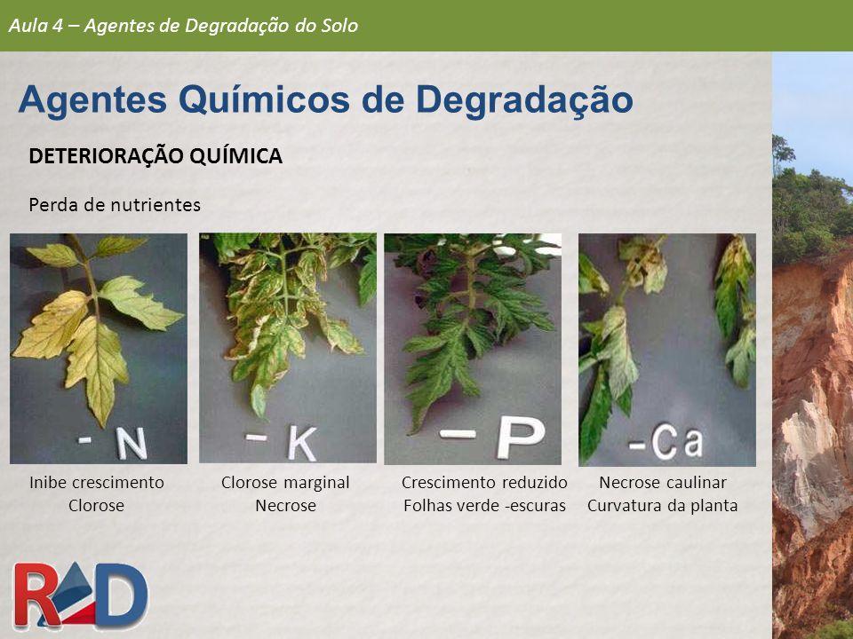 DETERIORAÇÃO QUÍMICA Perda de nutrientes Inibe crescimento Clorose Crescimento reduzido Folhas verde -escuras Clorose marginal Necrose Necrose caulina