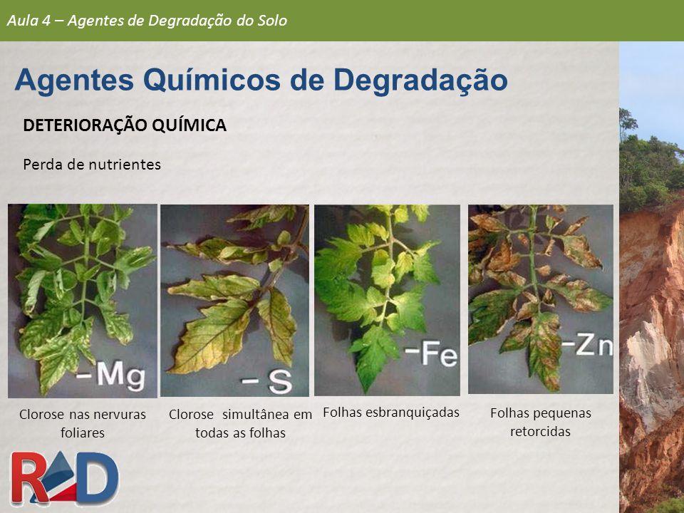 Clorose nas nervuras foliares Clorose simultânea em todas as folhas Folhas esbranquiçadas Folhas pequenas retorcidas Aula 4 – Agentes de Degradação do