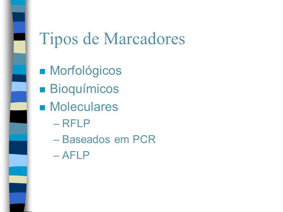 Tipos de Marcadores n Morfológicos n Bioquímicos n Moleculares –RFLP –Baseados em PCR –AFLP