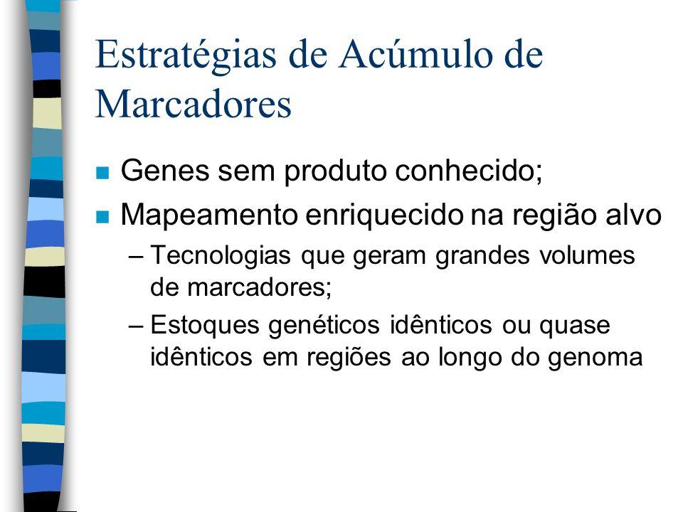 Estratégias de Acúmulo de Marcadores n Genes sem produto conhecido; n Mapeamento enriquecido na região alvo –Tecnologias que geram grandes volumes de