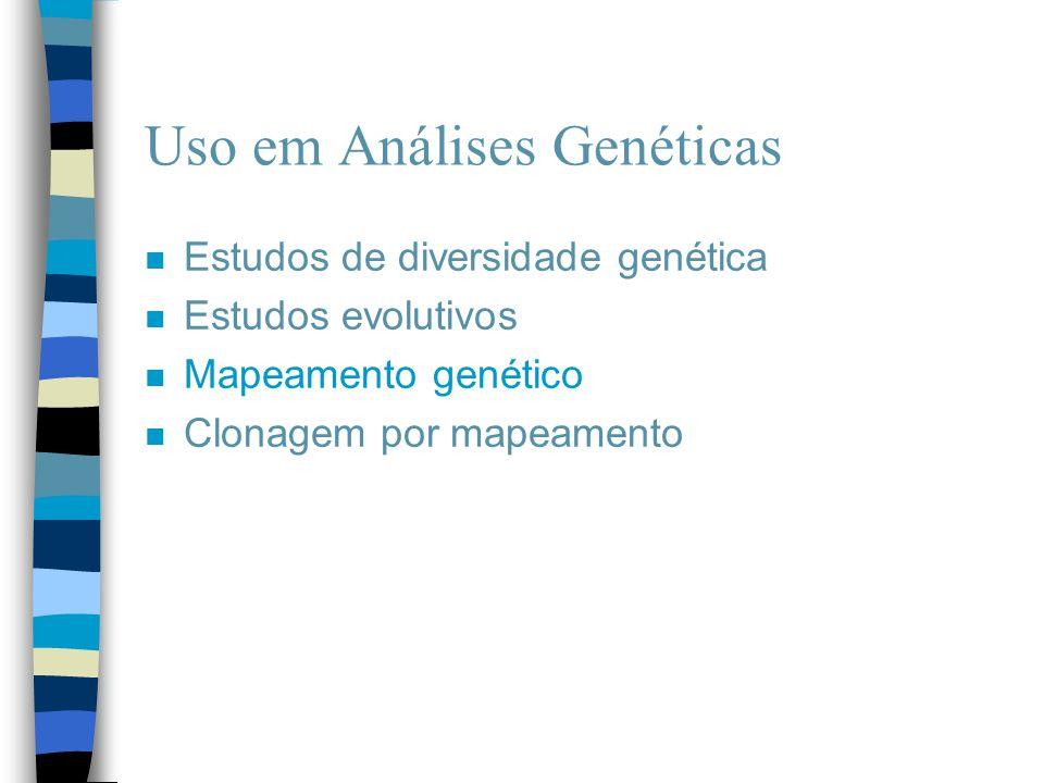 Uso em Análises Genéticas n Estudos de diversidade genética n Estudos evolutivos n Mapeamento genético n Clonagem por mapeamento