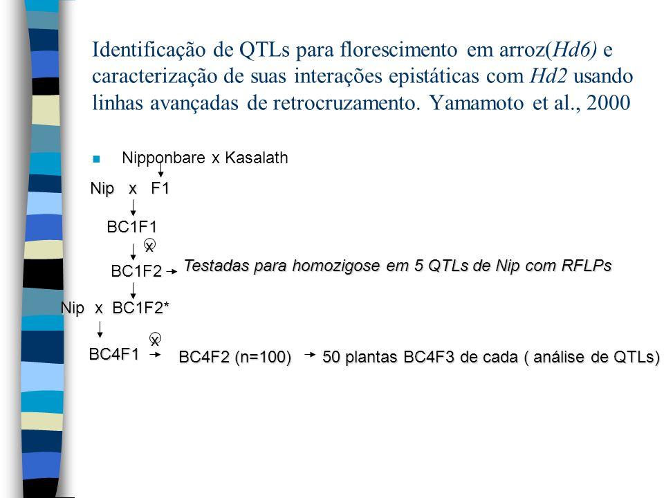 Identificação de QTLs para florescimento em arroz(Hd6) e caracterização de suas interações epistáticas com Hd2 usando linhas avançadas de retrocruzame