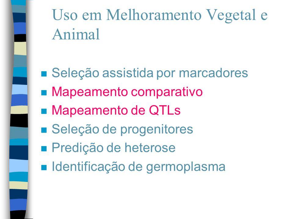 Uso em Melhoramento Vegetal e Animal n Seleção assistida por marcadores n Mapeamento comparativo n Mapeamento de QTLs n Seleção de progenitores n Pred