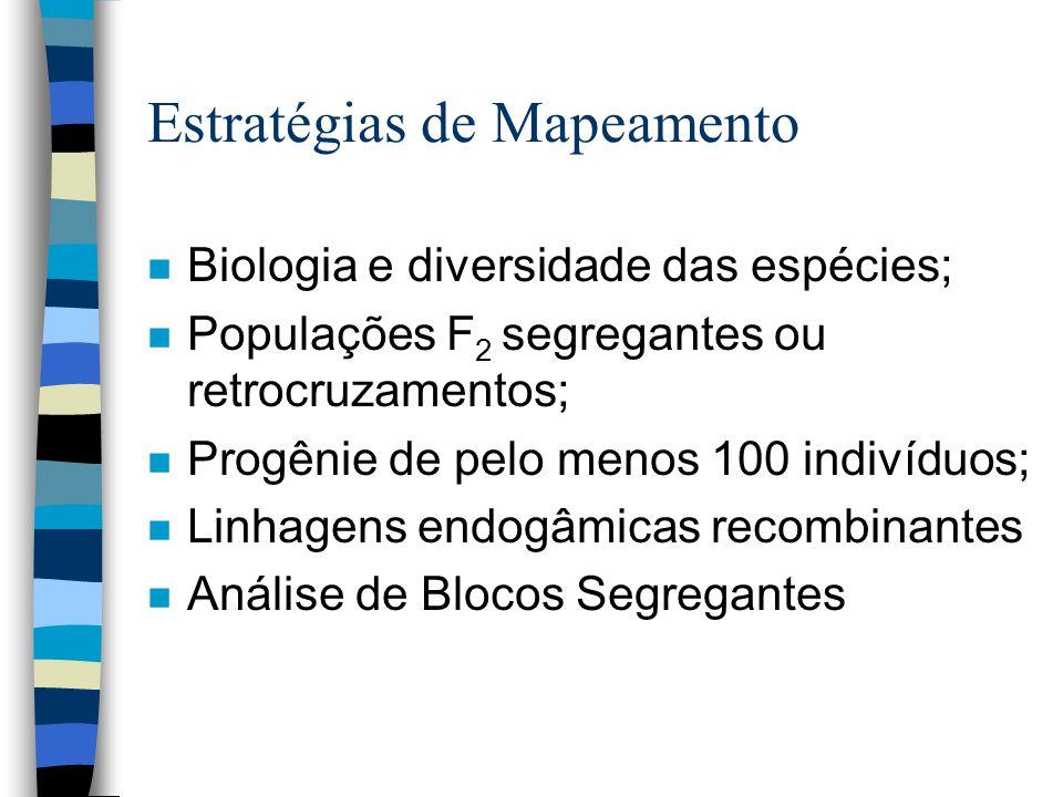 Estratégias de Mapeamento n Biologia e diversidade das espécies; n Populações F 2 segregantes ou retrocruzamentos; n Progênie de pelo menos 100 indiví
