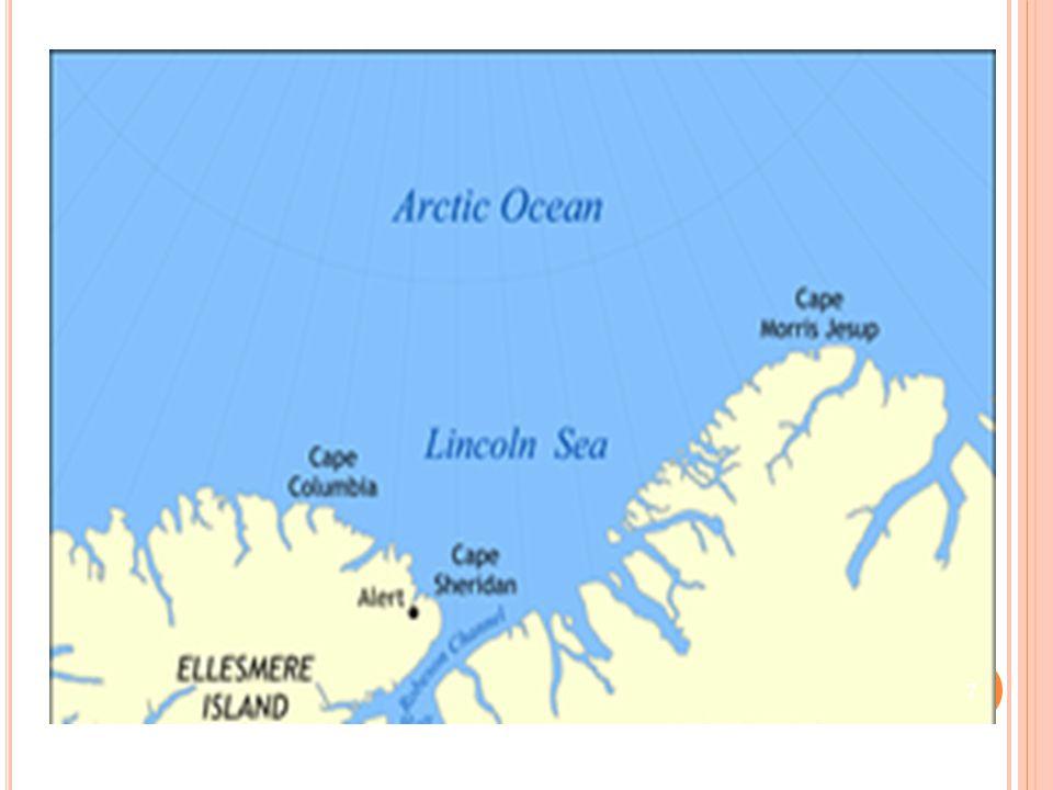 T ALUDE C ONTINENTAL Corresponde a porção intermediaria, recoberta por sedimentos finos e situada entre a plataforma continental e o fundo oceânico propriamente dito.