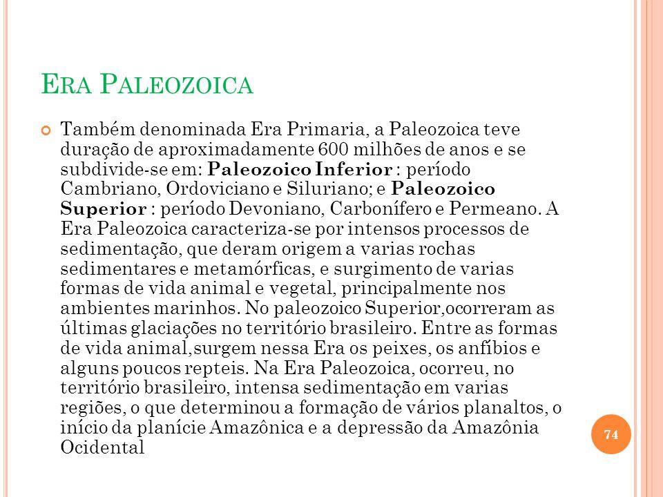 E RA P ALEOZOICA Também denominada Era Primaria, a Paleozoica teve duração de aproximadamente 600 milhões de anos e se subdivide-se em: Paleozoico Inf