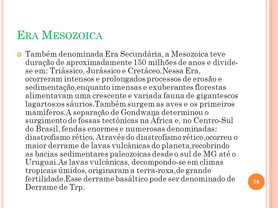 E RA M ESOZOICA Também denominada Era Secundária, a Mesozoica teve duração de aproximadamente 150 milhões de anos e divide- se em: Triássico, Jurássic