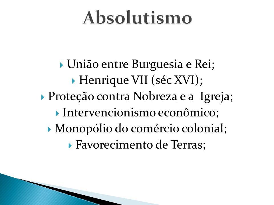  União entre Burguesia e Rei;  Henrique VII (séc XVI);  Proteção contra Nobreza e a Igreja;  Intervencionismo econômico;  Monopólio do comércio colonial;  Favorecimento de Terras;