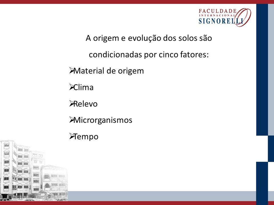A origem e evolução dos solos são condicionadas por cinco fatores:  Material de origem  Clima  Relevo  Microrganismos  Tempo