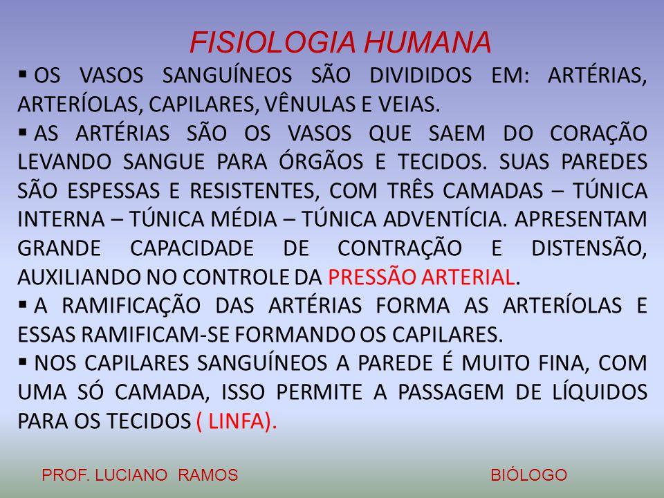 FISIOLOGIA HUMANA PROF. LUCIANO RAMOSBIÓLOGO  OS VASOS SANGUÍNEOS SÃO DIVIDIDOS EM: ARTÉRIAS, ARTERÍOLAS, CAPILARES, VÊNULAS E VEIAS.  AS ARTÉRIAS S
