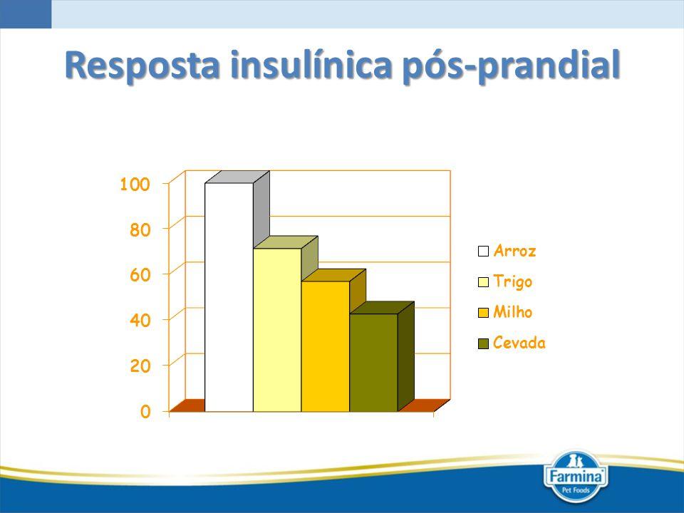 Resposta insulínica pós-prandial