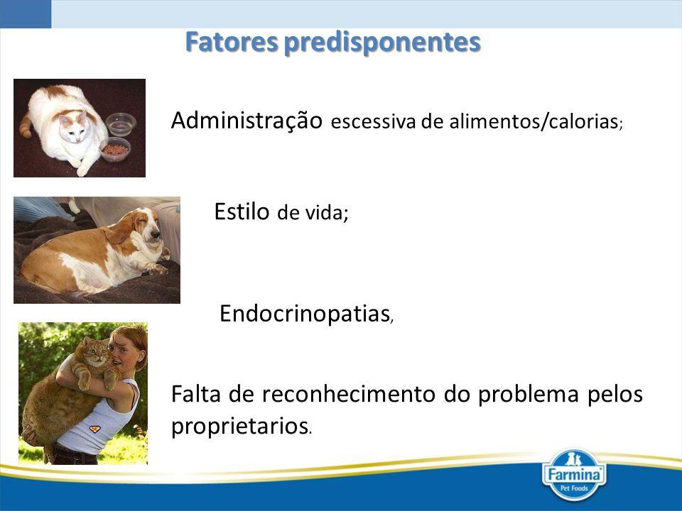 Administração escessiva de alimentos/calorias ; Estilo de vida; Falta de reconhecimento do problema pelos proprietarios. Fatores predisponentes Endocr