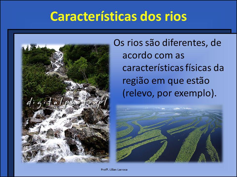 Rede hidrográfica Rede hidrográfica é o conjunto formado por um rio principal e todos os seus afluentes.