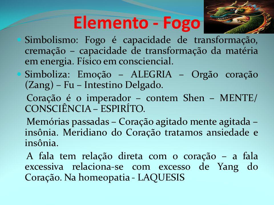 Elemento - Fogo Simbolismo: Fogo é capacidade de transformação, cremação – capacidade de transformação da matéria em energia.