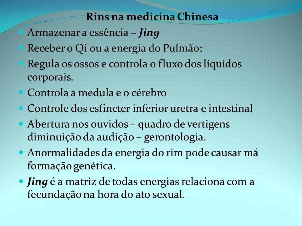 Rins na medicina Chinesa Armazenar a essência – Jing Receber o Qi ou a energia do Pulmão; Regula os ossos e controla o fluxo dos líquidos corporais.