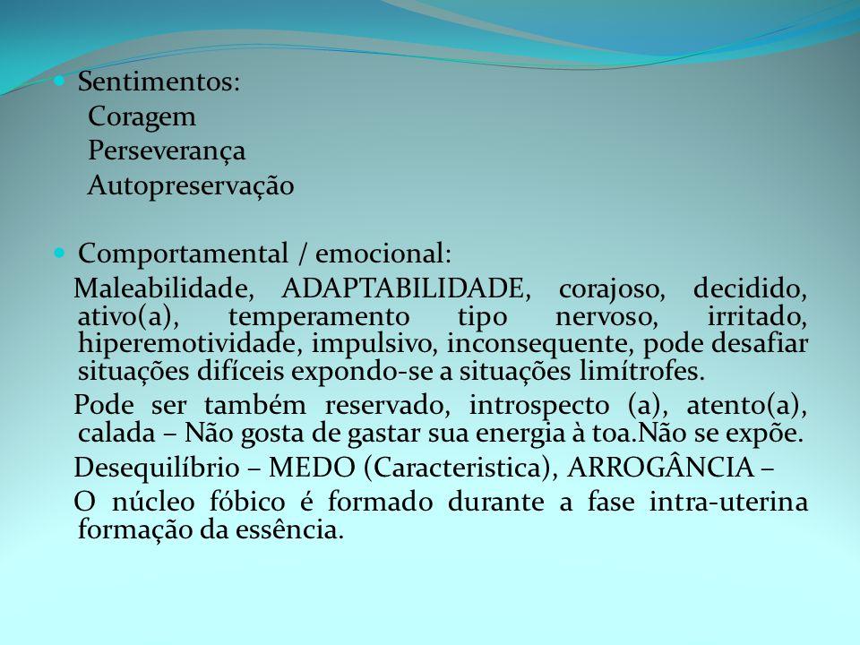 Sentimentos: Coragem Perseverança Autopreservação Comportamental / emocional: Maleabilidade, ADAPTABILIDADE, corajoso, decidido, ativo(a), temperamento tipo nervoso, irritado, hiperemotividade, impulsivo, inconsequente, pode desafiar situações difíceis expondo-se a situações limítrofes.
