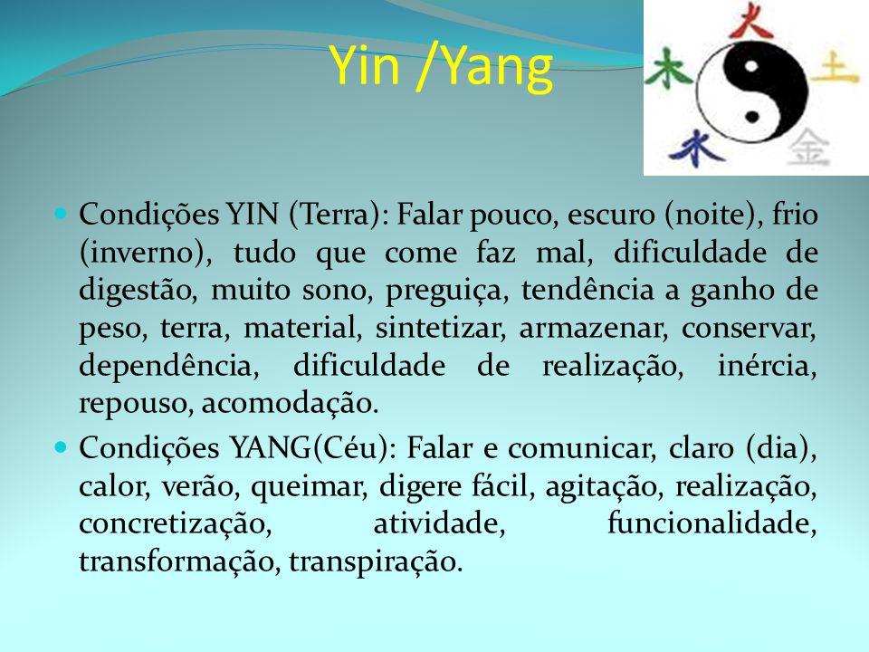 Yin /Yang Condições YIN (Terra): Falar pouco, escuro (noite), frio (inverno), tudo que come faz mal, dificuldade de digestão, muito sono, preguiça, tendência a ganho de peso, terra, material, sintetizar, armazenar, conservar, dependência, dificuldade de realização, inércia, repouso, acomodação.