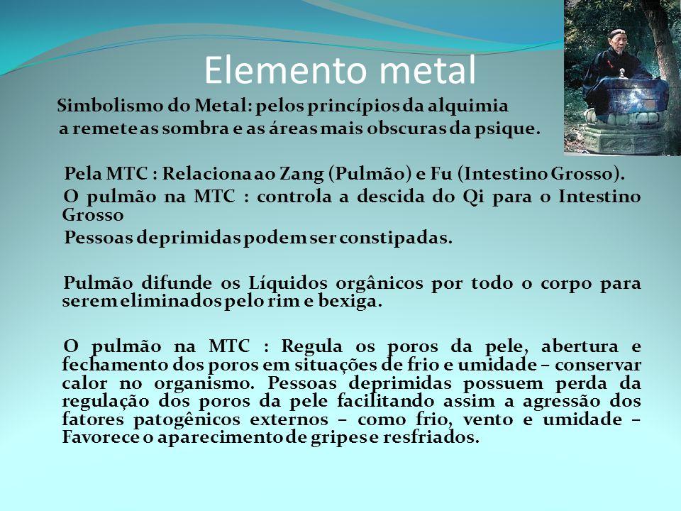 Elemento metal Simbolismo do Metal: pelos princípios da alquimia a remete as sombra e as áreas mais obscuras da psique.