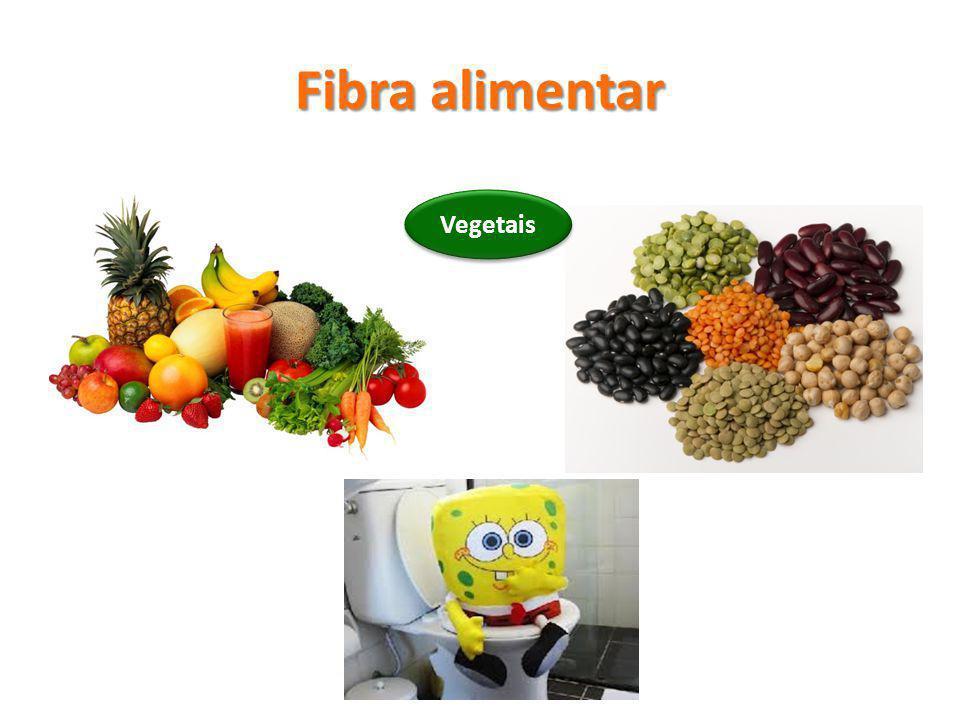 Fibra alimentar Vegetais