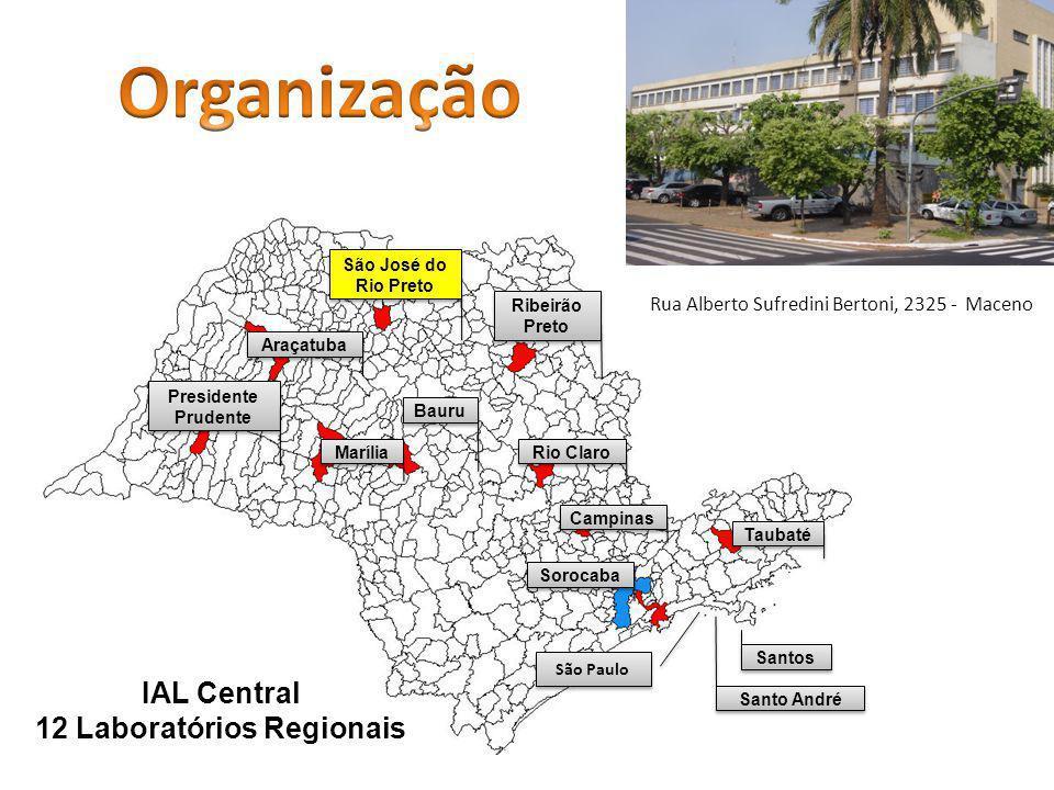 Presidente Prudente Araçatuba São José do Rio Preto Marília Bauru Ribeirão Preto Rio Claro Campinas Sorocaba Taubaté Santos Santo André IAL Central 12