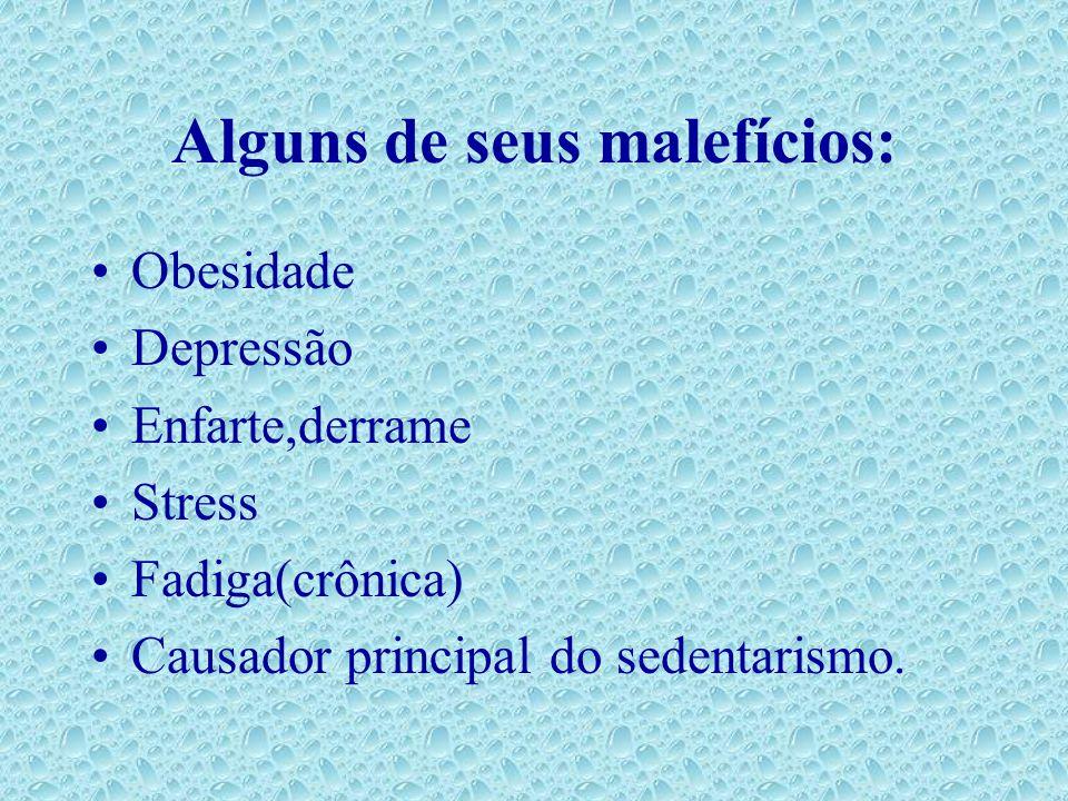 Alguns de seus malefícios: Obesidade Depressão Enfarte,derrame Stress Fadiga(crônica) Causador principal do sedentarismo.