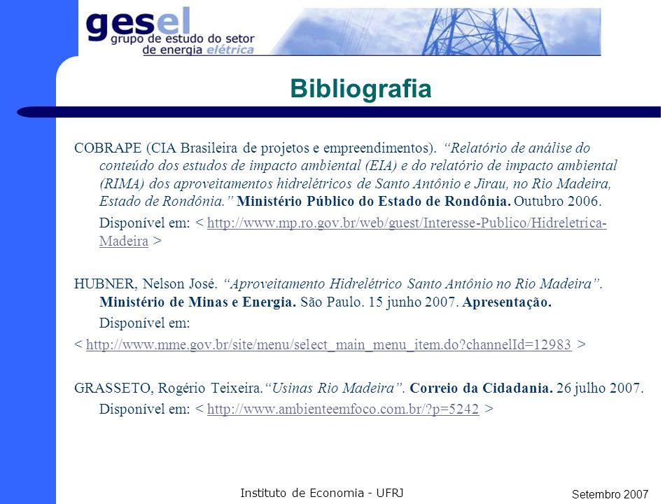 Setembro 2007 Instituto de Economia - UFRJ CONCLUSÃO No entanto, alguns pontos poderiam melhorar a situação: - Melhores condições de competição ao lei
