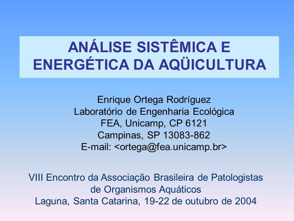 ANÁLISE SISTÊMICA E ENERGÉTICA DA AQÜICULTURA Enrique Ortega Rodríguez Laboratório de Engenharia Ecológica FEA, Unicamp, CP 6121 Campinas, SP 13083-86