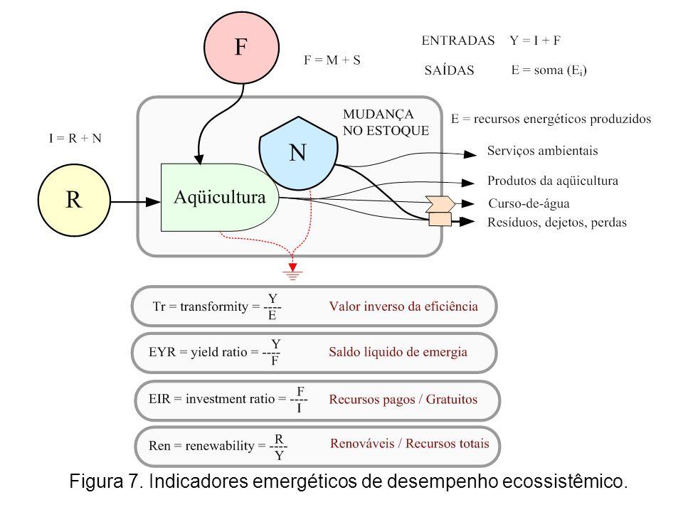 Figura 7. Indicadores emergéticos de desempenho ecossistêmico.
