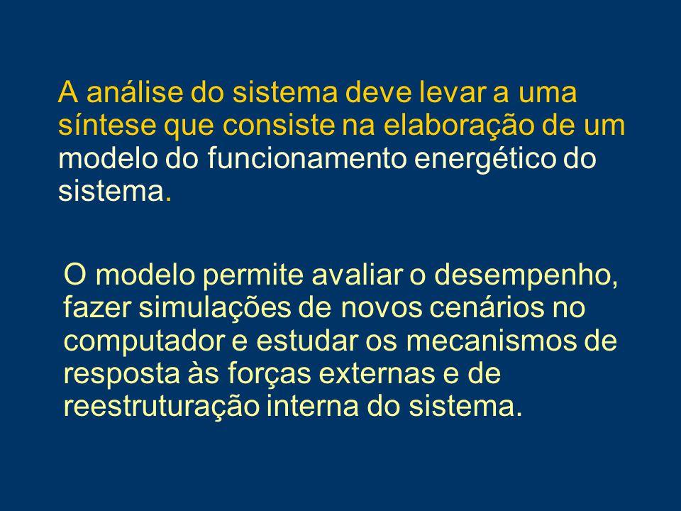 A análise do sistema deve levar a uma síntese que consiste na elaboração de um modelo do funcionamento energético do sistema. O modelo permite avaliar