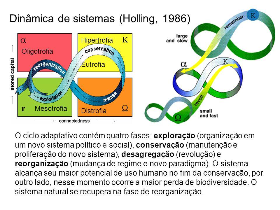O ciclo adaptativo contém quatro fases: exploração (organização em um novo sistema político e social), conservação (manutenção e proliferação do novo
