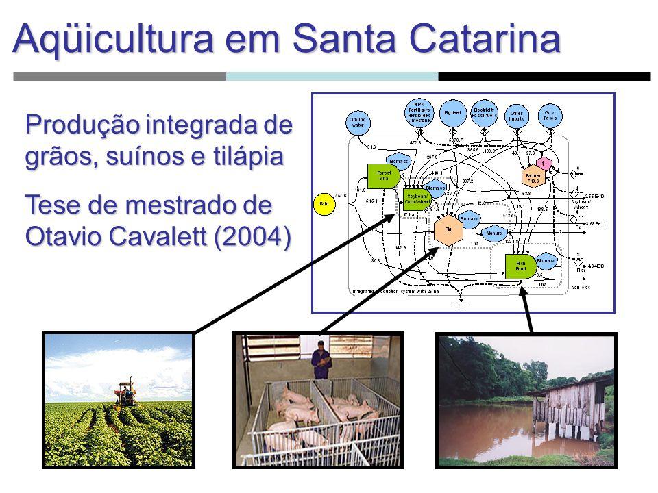 A partir dos índices de desempenho emergético, discute-se a problemática sócio-ambiental e sanitária das bacias hidrográficas.