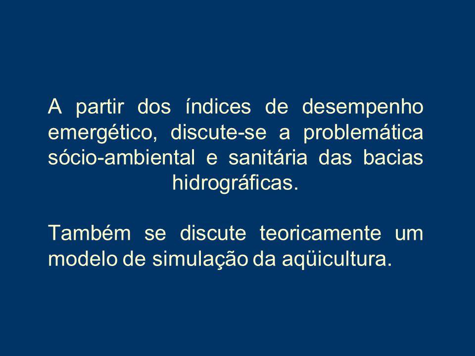 A partir dos índices de desempenho emergético, discute-se a problemática sócio-ambiental e sanitária das bacias hidrográficas. Também se discute teori