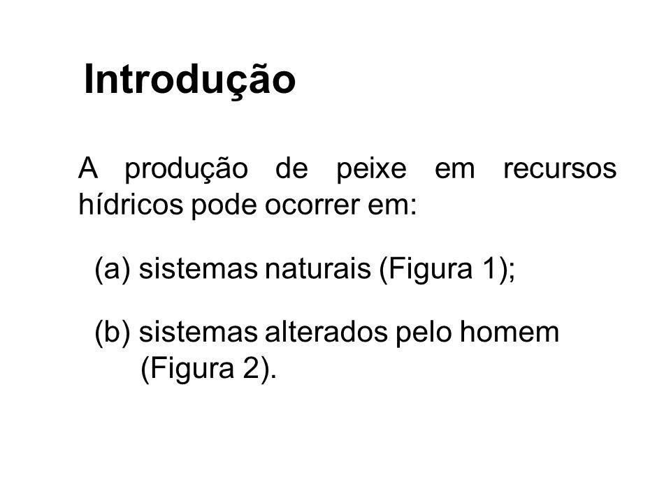 Introdução A produção de peixe em recursos hídricos pode ocorrer em: (a) sistemas naturais (Figura 1); (b) sistemas alterados pelo homem (Figura 2).